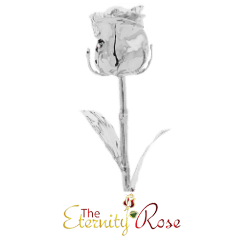 Silver-dipped rose